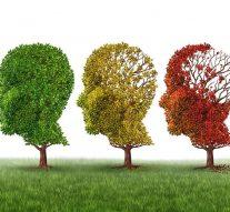 El ejercicio previene la demencia en algunas personas de la tercera edad